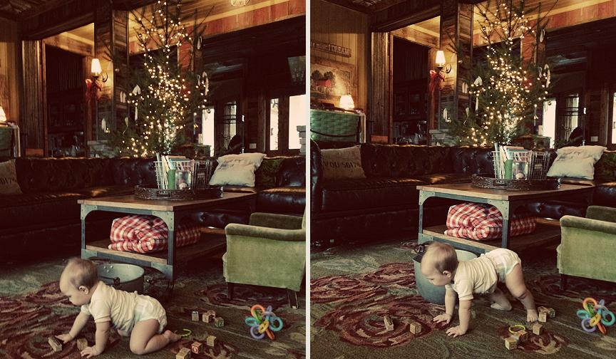 Christmas Tree 2012 – Eden's Bouquet