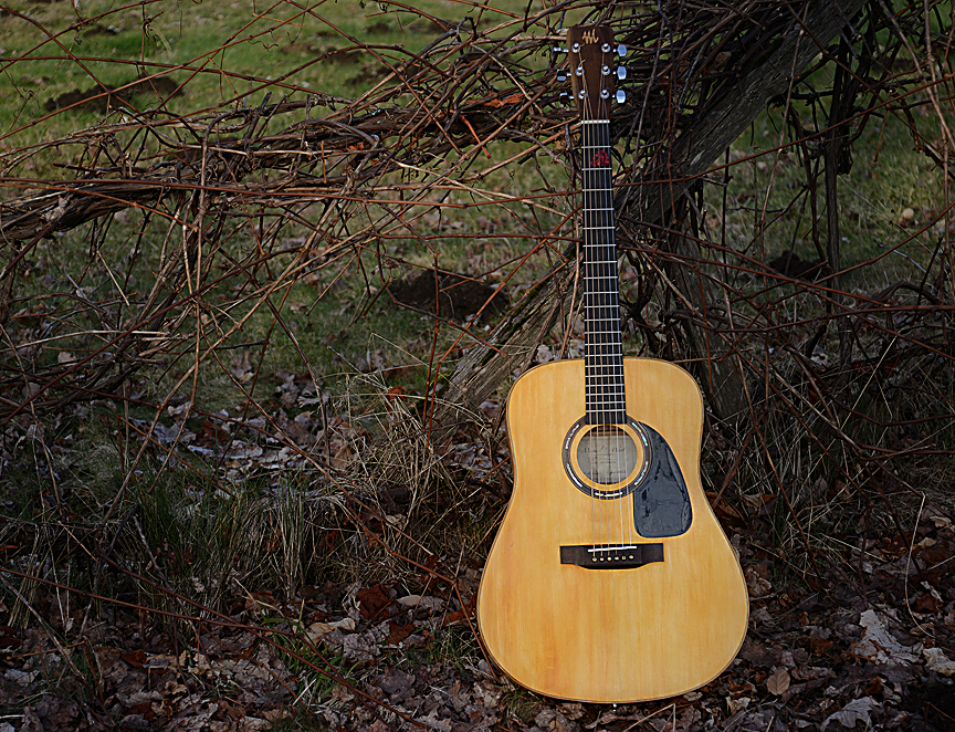 Tim Guitar