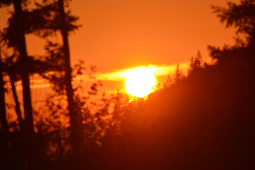 JACE SUN